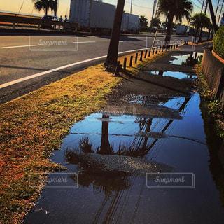 雨上がり、晴れ。の写真・画像素材[2189438]