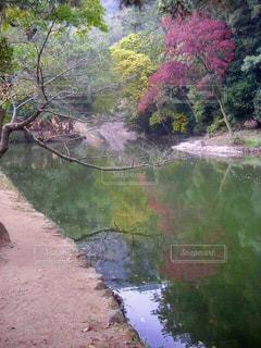 水面に映った紅葉の写真・画像素材[2513881]