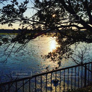 水面に映る夕陽の写真・画像素材[2625899]