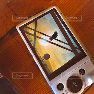 夕陽を背に留まる鳥・コンデジの写真・画像素材[2860487]