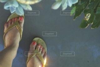 ビーチサンダルを履いた女性の足元と植物の写真・画像素材[3468347]