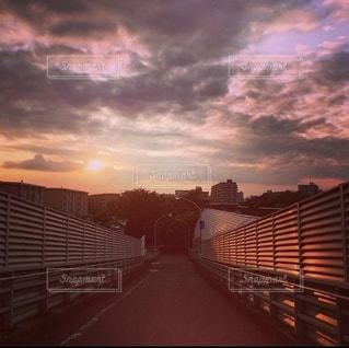 夕日に染まる散歩道の写真・画像素材[3485796]