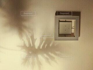 天井に映る葉の影の写真・画像素材[4466914]