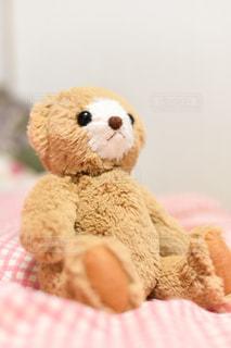 動物,茶色,ぬいぐるみ,可愛い,くま,ベージュ,熊,ミルクティー,くまさん,くまのぬいぐるみ,クマのぬいぐるみ,ミルクティー色