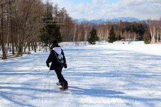 自然,アウトドア,スポーツ,雪,屋外,樹木,人物,人,ゲレンデ,レジャー,スキー場,スノーボード