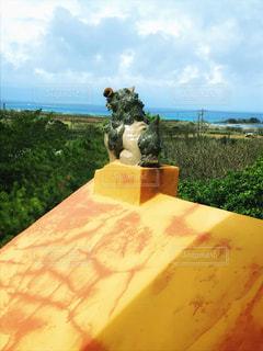 来間島のシーサーの写真・画像素材[2618007]