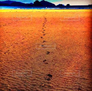 海,空,秋,屋外,砂,ビーチ,青,後ろ姿,砂浜,波,海岸,足跡,人物,背中,人,浜辺,友達,インスタ映え