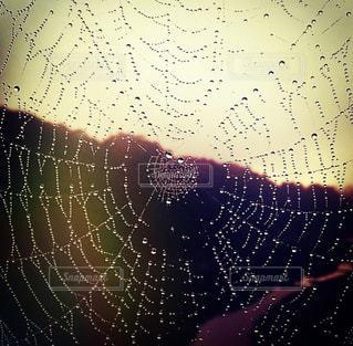 水滴,光,蜘蛛の巣,朝焼け,欄干,朝露