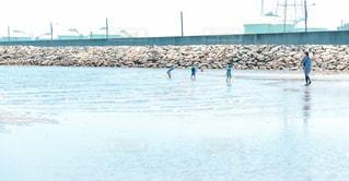 水の体の横に立っているカモメの群れの写真・画像素材[1312468]