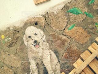 犬,茶色,韓国,ベージュ,落書き,ウォールアート