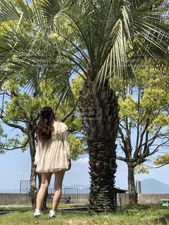 晴れ,島,海辺,お散歩,ぶらり旅,晴れた日,島人,改正