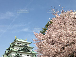 JAPANの写真・画像素材[2036270]
