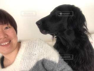 犬,屋内,黒,女の子,フラットコーテッドレトリバー