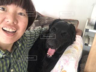 犬,女の子,あくび,眠たい,瞬間,フラットコーテッドレトリバー