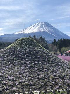 富士山へプチ旅行の写真・画像素材[2087673]