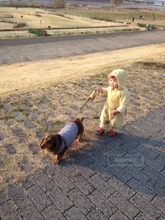 公園,子供,犬の散歩,子どもとわんこ,子供の散歩