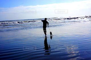 自然,海,空,太陽,水面,反射,旅行