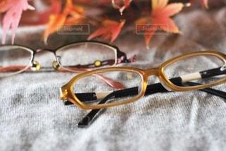 ファッション,紅葉,アクセサリー,もみじ,眼鏡,メガネ
