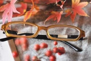 ファッション,紅葉,アクセサリー,本,読書,もみじ,眼鏡,南天,メガネ,なんてん,南天の実