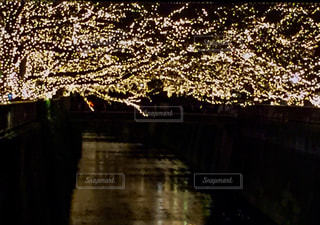 灯のトンネルの写真・画像素材[2043550]