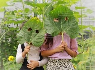 2人,夏,葉,女の子,草,手持ち,人物,人,ポートレート,姉妹,お面,ライフスタイル,草木,手元,向日葵の葉