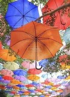 雨の日もワクワクの写真・画像素材[3670525]