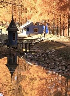 秋の景色の写真・画像素材[3712692]