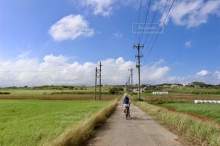 田舎道の写真・画像素材[3241005]