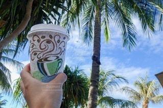 カフェ,空,コーヒー,屋外,飛行機,手持ち,樹木,人物,ヤシの木,カフェラテ,珈琲,ポートレート,ライフスタイル,草木,パーム,手元