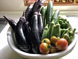 採れたて野菜の写真・画像素材[4655384]