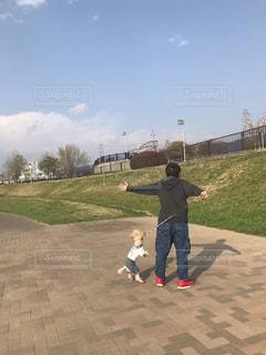 女性,犬,公園,トイプードル,お散歩