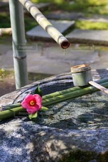お寺の手水舎の水滴の写真・画像素材[2129124]