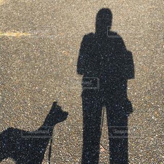 犬,屋外,散歩,影,癒し,地面,影絵,休暇