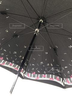 猫,傘,黒,日傘,柄,音符