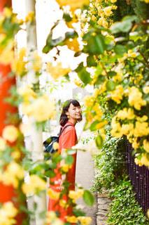 花と少女との写真・画像素材[3105811]
