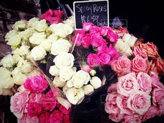 クラシックな雰囲気のバラの花たちの写真・画像素材[2049685]