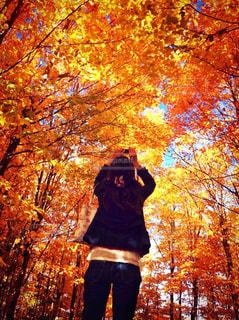紅葉の写真を撮っている女性の写真・画像素材[2129751]