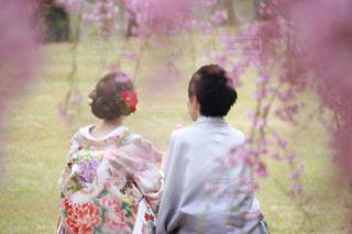 女性,男性,公園,桜,後ろ姿,人物,背中,人,後姿,和服