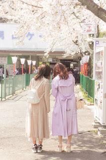 ファッション,桜,後ろ姿,女の子,背中,人