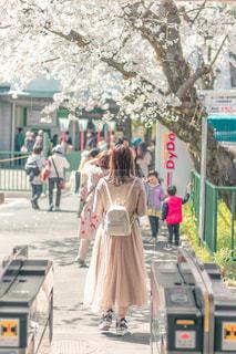 通りを歩く女性のグループの写真・画像素材[2264607]