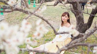 木の隣に立っている女性の写真・画像素材[2314818]