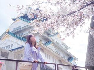 女性,風景,空,花,春,桜,屋外,お花見,人