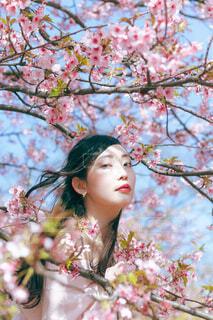 ピンクの花を着た女性の写真・画像素材[4271218]