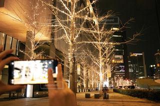 屋外,綺麗,スマホ,撮影,光,美しい,樹木,イルミネーション,都会,人,キラキラ,歩道,梅田,明るい,グランフロント,ゴールド,スマホ撮影,けやき並木,グランフロント大阪,大阪イルミネーション,シャンパンゴールド,梅田イルミネーション,イルミネーション撮影