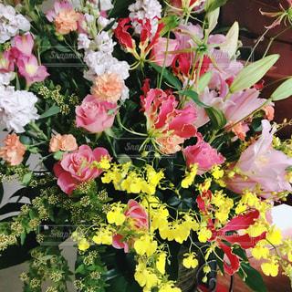 発表会のお花。の写真・画像素材[2054359]