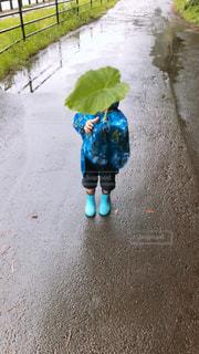 子ども,雨,水滴,水たまり,男の子,まったり,レインコート,雨の日,雨水たまり