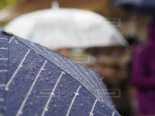 雨,傘,神社,青,黒,雫,梅雨,行列,しずく,滴