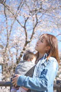 桜フォトの写真・画像素材[3054776]