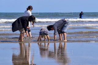 自然,風景,海,屋外,ビーチ,砂浜,水面,海岸,後姿,潮干狩り,日中