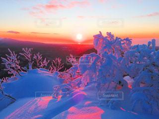 白老北岳からの朝陽と染まる樹木の写真・画像素材[2899251]